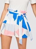 Paperbag Waist Colorblock Belted Shorts