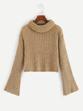 Trumpet Sleeve Crop Jumper