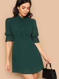 Tie Neck Flounce Sleeve Dress