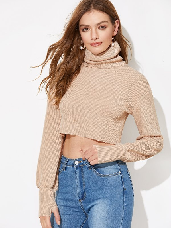 Solid High-Neck Crop Sweater With Thumb Holes
